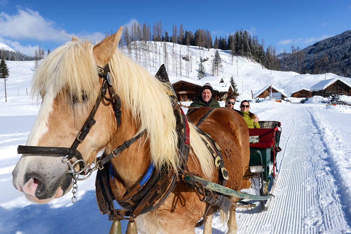 Pferdeschlittenfahrten Winterurlaub Radstadt 1
